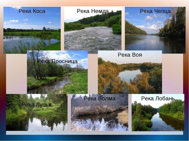 Река Коса Река Немда Река Чепца Река Просница Река Лупья Река Воя Река Волма...