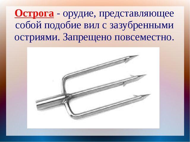 Острога - орудие, представляющее собой подобие вил с зазубренными остриями. З...