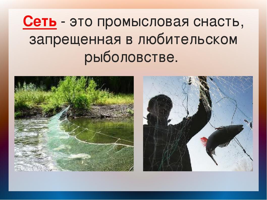 Сеть - это промысловая снасть, запрещенная в любительском рыболовстве.