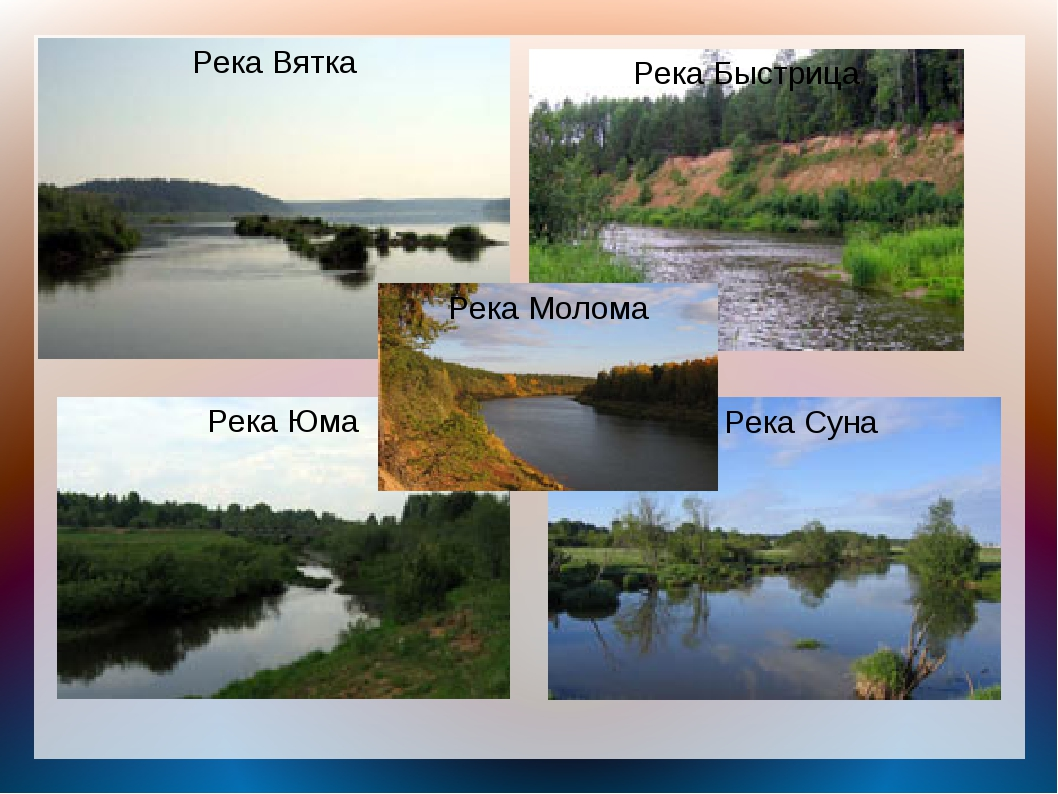 Река Вятка Река Быстрица Река Юма Река Суна Река Молома