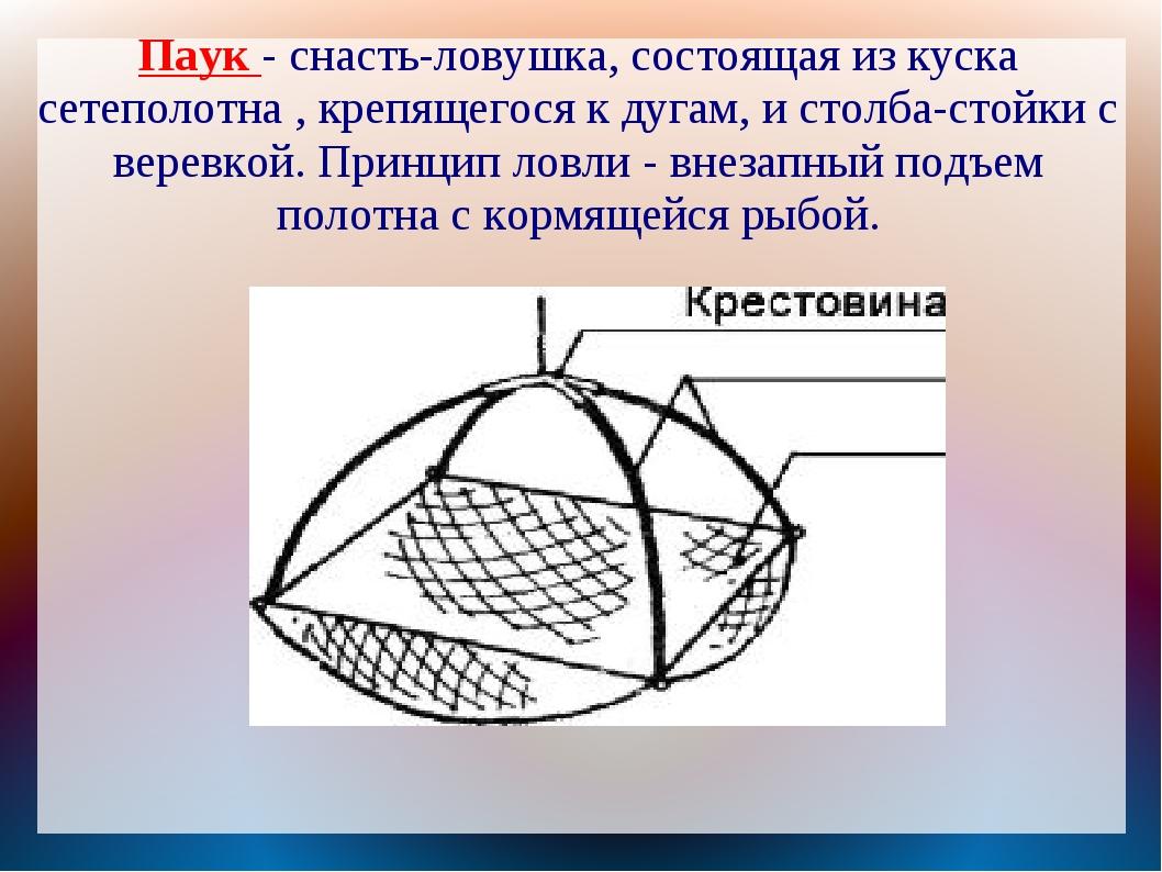 Паук - снасть-ловушка, состоящая из куска сетеполотна , крепящегося к дугам,...