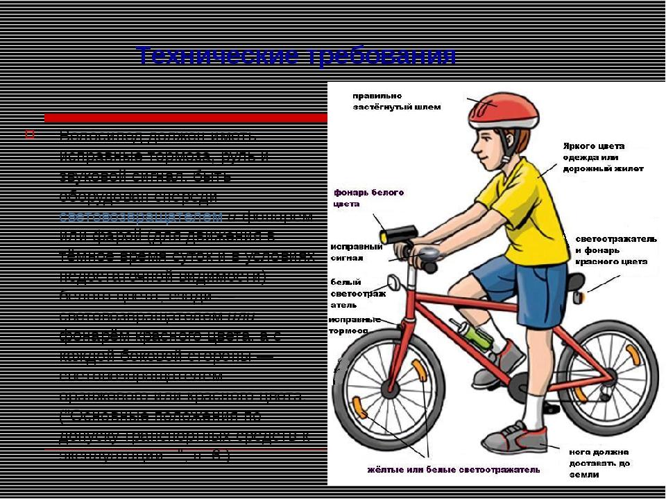 Велосипед должен иметь исправные тормоза, руль и звуковой сигнал, быть оборуд...