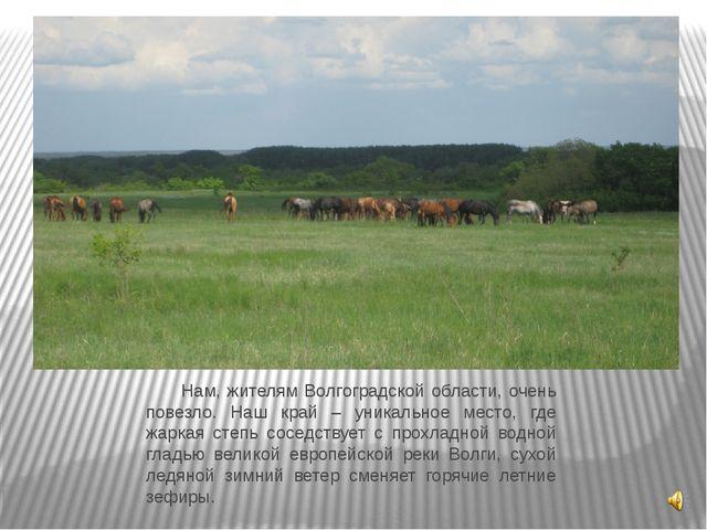 Нам, жителям Волгоградской области, очень повезло. Наш край – уникальное мес...