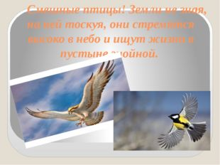Смешные птицы! Земли не зная, на ней тоскуя, они стремятся высоко в небо и и