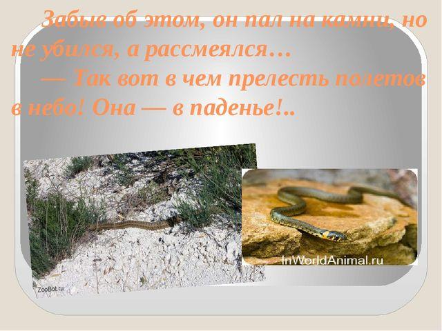 Забыв об этом, он пал на камни, но не убился, а рассмеялся… — Так вот в чем...