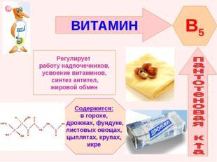 ВИТАМИН B5 Регулирует работу надпочечников, усвоение витаминов, синтез антите