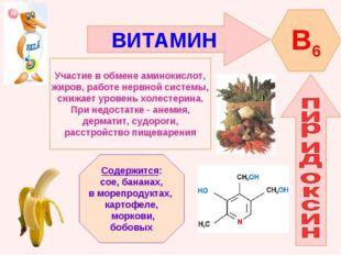ВИТАМИН B6 Участие в обмене аминокислот, жиров, работе нервной системы, снижа