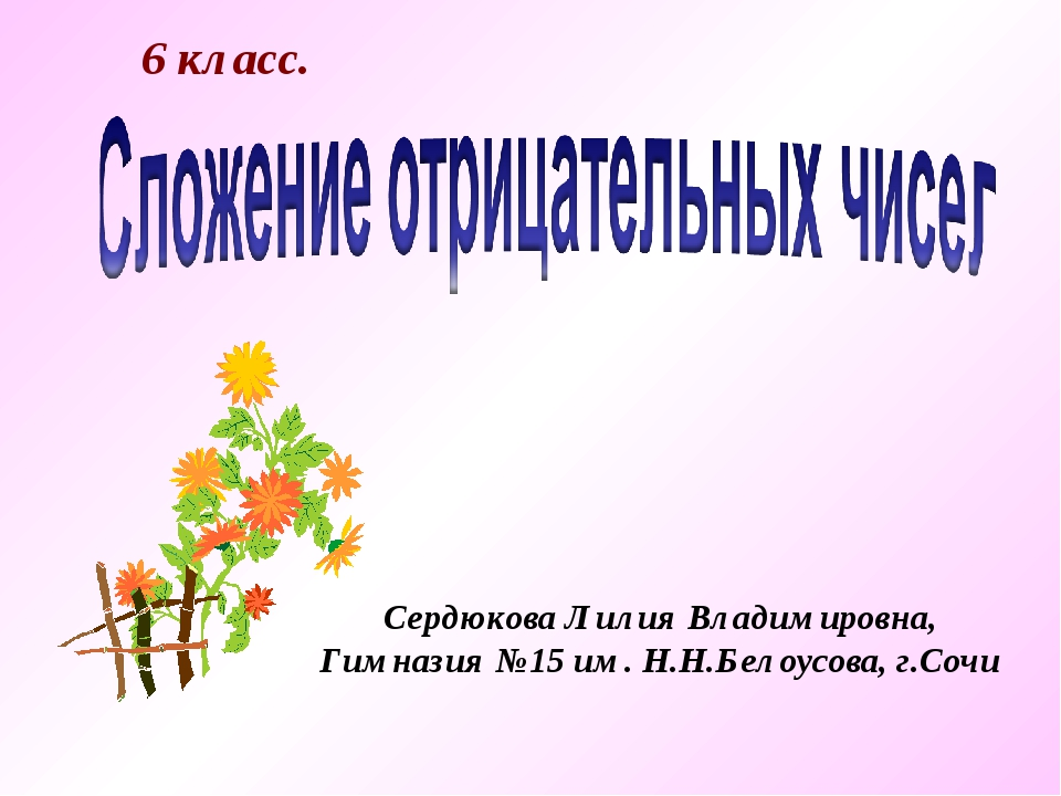 6 класс. Сердюкова Лилия Владимировна, Гимназия №15 им. Н.Н.Белоусова, г.Сочи