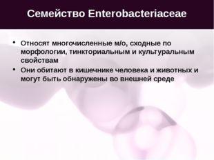 Семейство Enterobacteriaceae Относят многочисленные м/о, сходные по морфологи