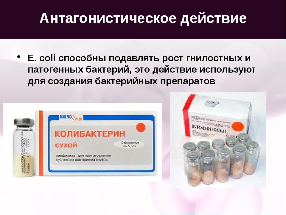 Антагонистическое действие E. coli способны подавлять рост гнилостных и патог...