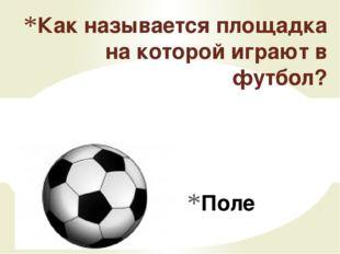 Поле Как называется площадка на которой играют в футбол?