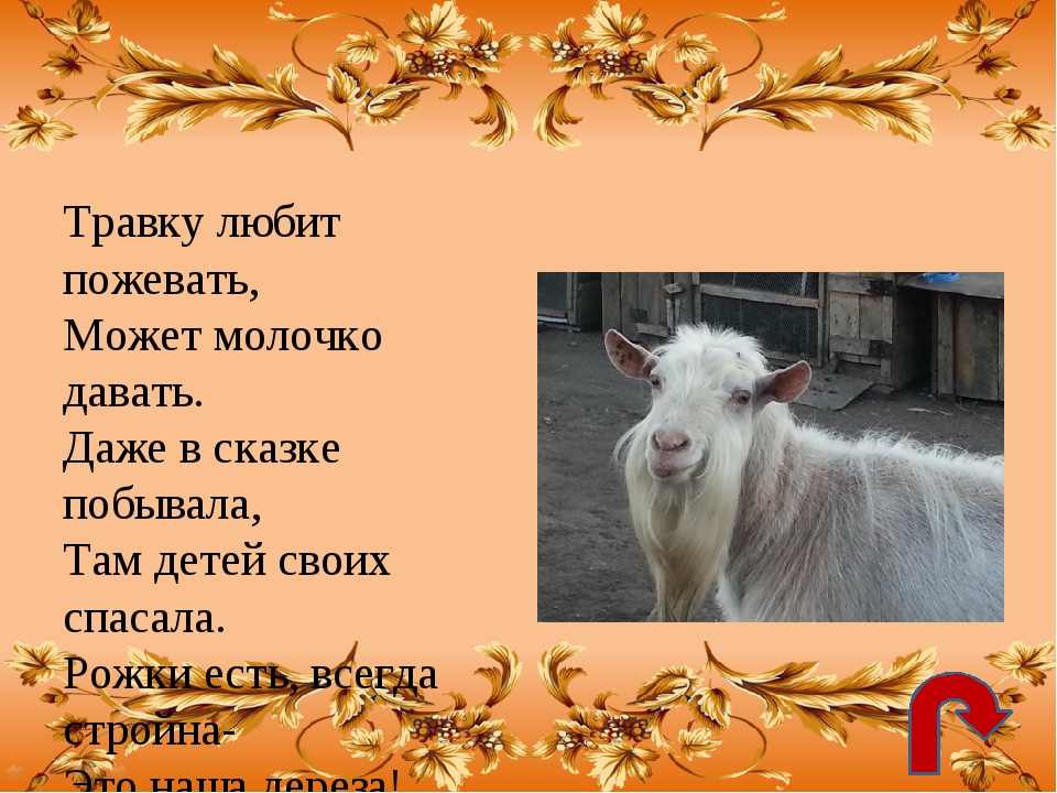 Используемые Интернет-ресурсы: http://img-fotki.yandex.ru/get/5801/18869520.1...