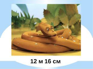 12 м 16 см