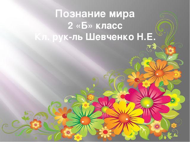 Познание мира 2 «Б» класс Кл. рук-ль Шевченко Н.Е.