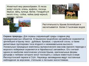 Животный мир разнообразен. В лесах живут косуля, олень, муфлон, лисица, барсу