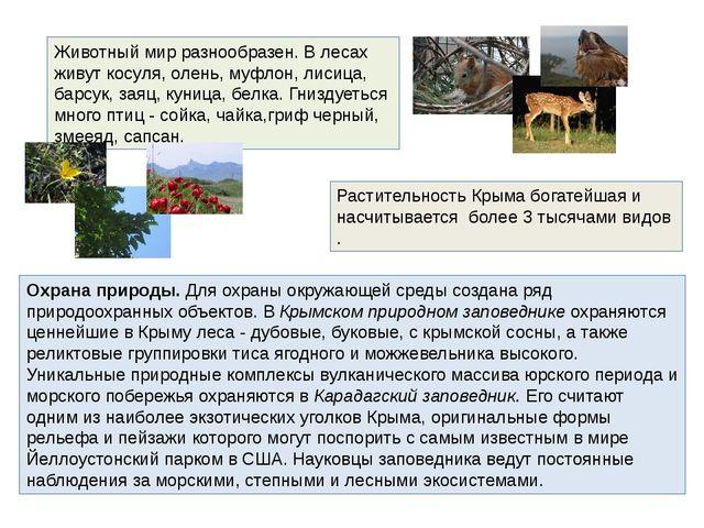 Животный мир разнообразен. В лесах живут косуля, олень, муфлон, лисица, барсу...