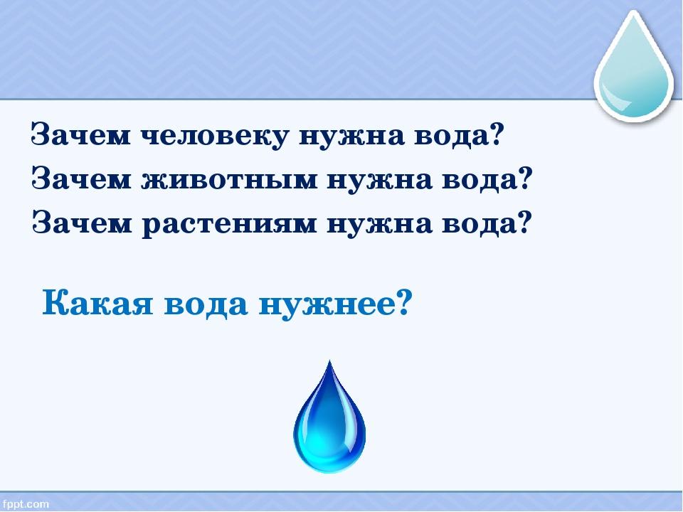 Какая вода нужнее? Зачем человеку нужна вода? Зачем животным нужна вода? Заче...