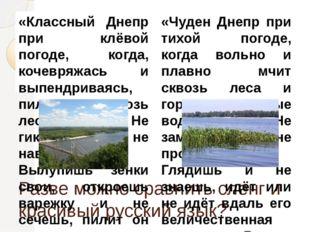 Разве можно сравнить сленг и красивый русский язык? «Классный Днепр при клёво