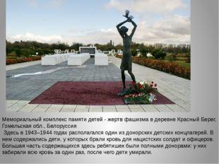 Мемориальный комплекс памяти детей - жертв фашизма в деревне Красный Берег, Г