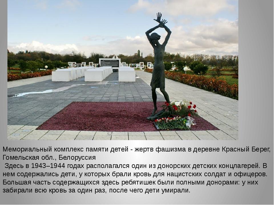 Мемориальный комплекс памяти детей - жертв фашизма в деревне Красный Берег, Г...