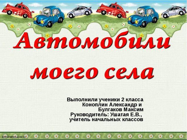 Выполнили ученики 2 класса Коноплин Александр и Булгаков Максим Руководитель:...