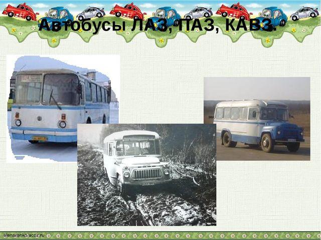Автобусы ЛАЗ, ПАЗ, КАВЗ.