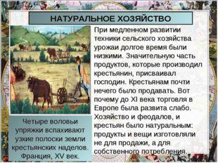 При медленном развитии техники сельского хозяйства урожаи долгое время были н