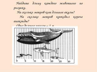 Найдите длину каждого животного по рисунку. На сколько метров кит длиннее аку