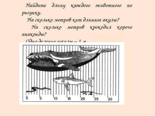 Найдите длину каждого животного по рисунку. На сколько метров кит длиннее аку...