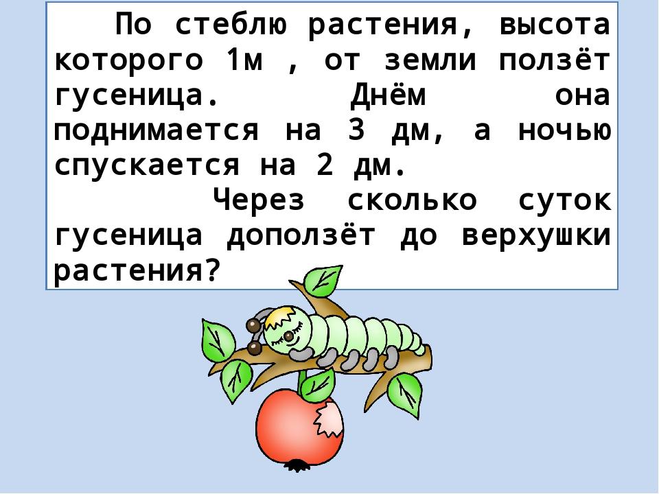 По стеблю растения, высота которого 1м , от земли ползёт гусеница. Днём она...