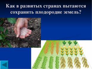 Как в развитых странах пытаются сохранить плодородие земель?