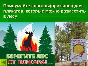 Придумайте слоганы(призывы) для плакатов, которые можно разместить в лесу