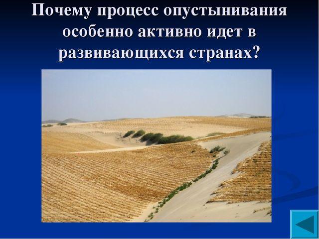 Почему процесс опустынивания особенно активно идет в развивающихся странах?