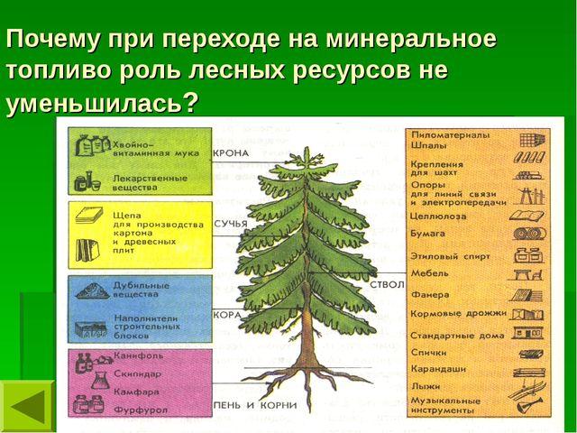 Почему при переходе на минеральное топливо роль лесных ресурсов не уменьшилась?