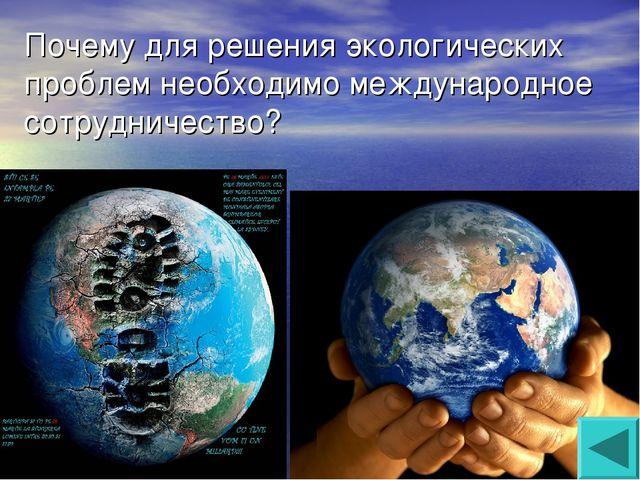 Почему для решения экологических проблем необходимо международное сотрудничес...