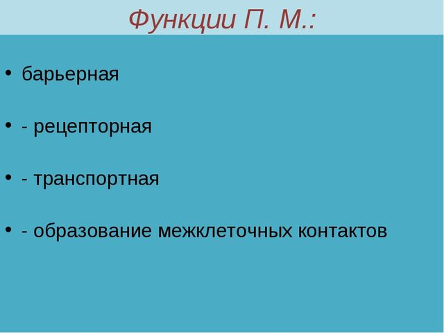 Функции П. М.: барьерная - рецепторная - транспортная - образование межклеточ...