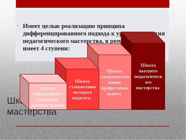Школа профессионального мастерства Имеет целью реализацию принципа дифференци...