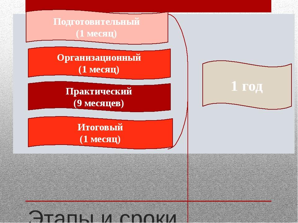 Этапы и сроки реализации проекта Подготовительный (1 месяц) Организационный...