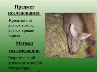 Предмет исследования Крольчата от разных самок, разных сроков окрола. Методы