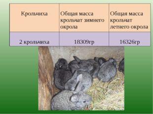 Крольчиха Общая масса крольчат зимнего окрола Общая масса крольчат летнего о