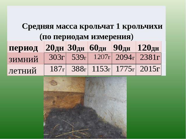 Средняямасса крольчат 1 крольчихи (по периодам измерения) период 20дн 30дн 6...