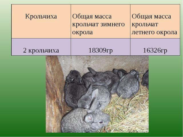 Крольчиха Общая масса крольчат зимнего окрола Общая масса крольчат летнего о...