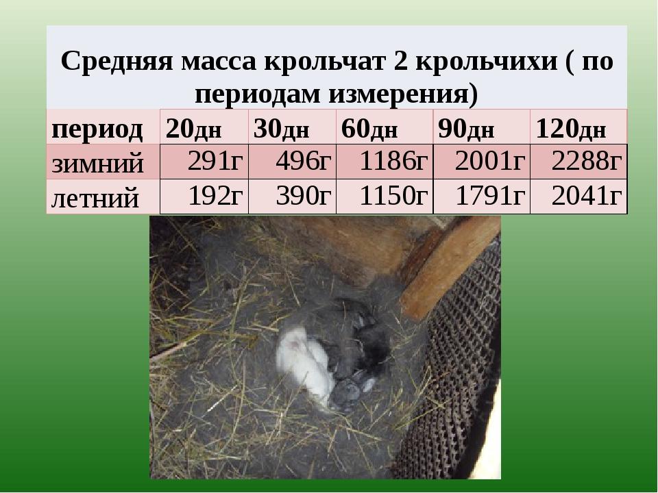 Средняя масса крольчат 2 крольчихи ( по периодам измерения) период 20дн 30дн...