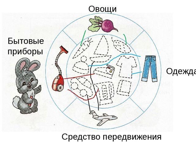 Овощи Одежда Бытовые приборы Средство передвижения