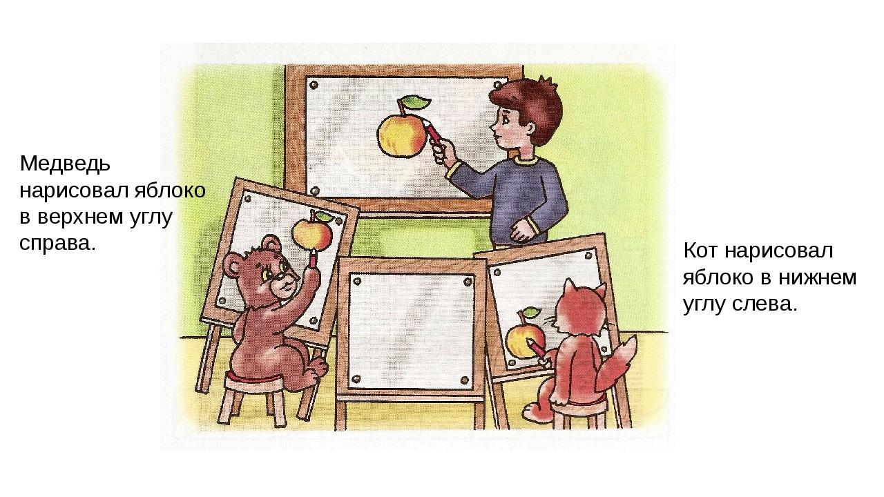 Медведь нарисовал яблоко в верхнем углу справа. Кот нарисовал яблоко в нижнем...