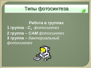 Работа в группах 1 группа - С4 фотосинтез 2 группа – САМ фотосинтез 3 группа