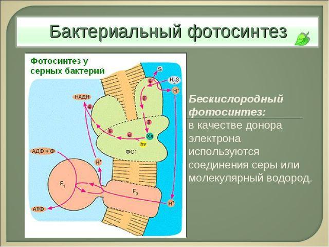 Бескислородный фотосинтез: в качестве донора электрона используются соединени...