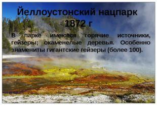 Йеллоустонский нацпарк 1872 г В парке имеются горячие источники, гейзеры; ока