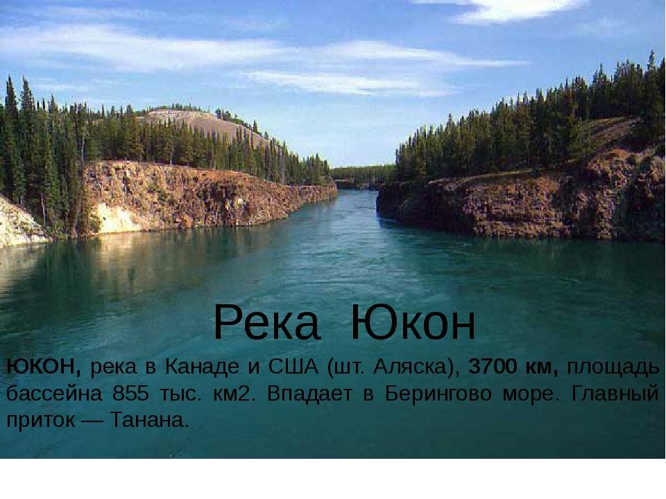 Река Юкон ЮКОН, река в Канаде и США (шт. Аляска), 3700 км, площадь бассейна 8...