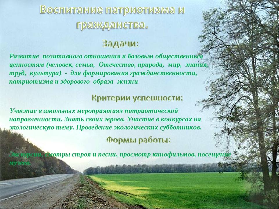 Развитие позитивного отношения к базовым общественным ценностям (человек, сем...